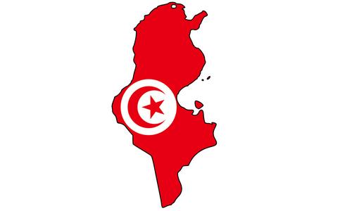 Statistics of Shiites in Tunisia