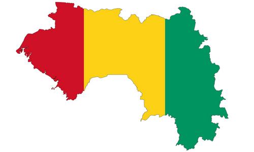 Statistics of Shiites in Guinea