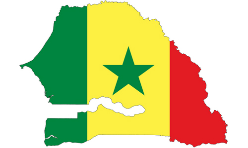 Statistics of Shiites in Senegal