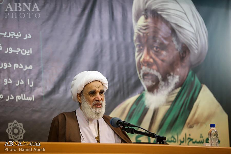 Ayatollah Kaabi: Sheikh Zakzaky is world reformer