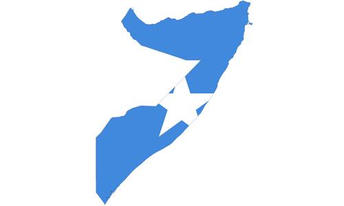 Статисика шиитов Сомали